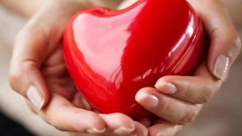 Colesterolo alto: pleurotus o statine? La natura supera la chimica
