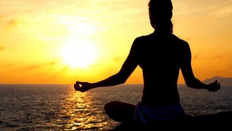 Cordyceps: energia e serenità. Ginseng: energia e palpitazioni