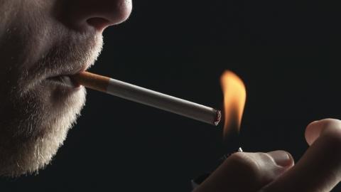 Il Reishi riduce l'azione cancerogena della sigaretta