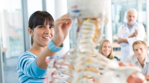 Il Reishi ferma l'osteoporosi e rafforza l'osso