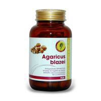 AGARICUS PLUS a €39.99 da 90 COMPRESSE DA 500 mg di PRODOTTO PURO + ESTRATTO SECCO